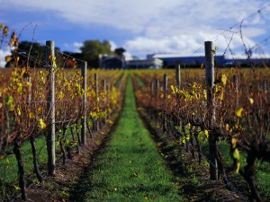 private yarra valley